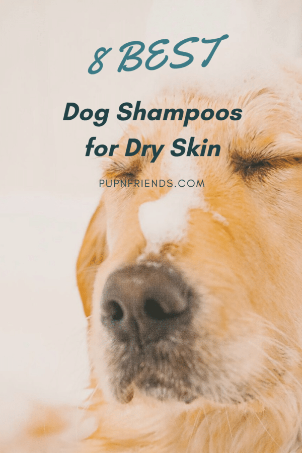 Best Dog Shampoo for Dry Skin #pupnfriends