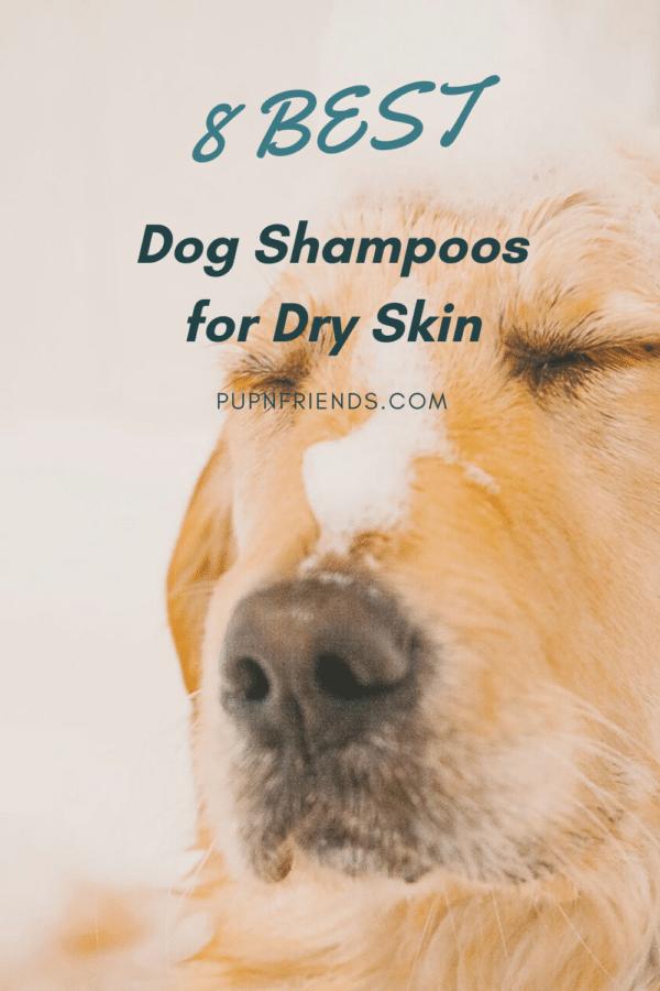 Best Dog Shampoo for Dry Skin #pupnfriends