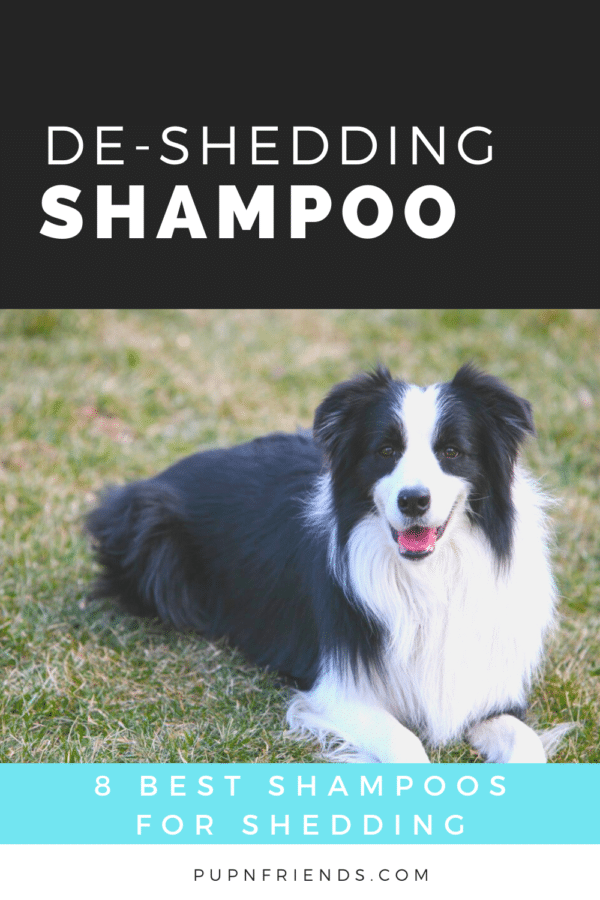 8 Best Dog Shampoos for Shedding #pupnfriends