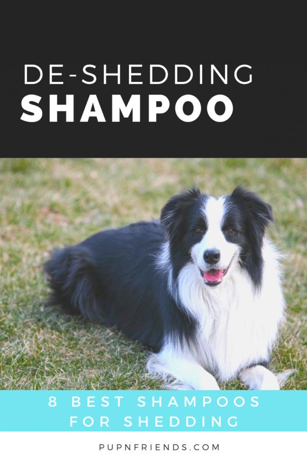 8 Best Dog Shampoos for Shedding #pupnfriends